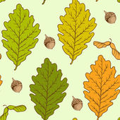 Oak leaves and acorns — Vector de stock
