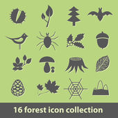 Forest icons — Stock Vector