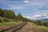 Ferrocarril en la naturaleza — Foto de Stock