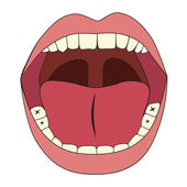 Mouth illustration — Stock Vector