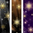 Banner with golden snowflakes — Stock Vector
