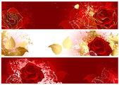 Kırmızı gül ile banner — Stok Vektör