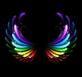 Rainbow wings — Stock Vector