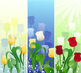 Banner with tulips — Stock Vector