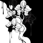 Постер, плакат: Monochrome orchid