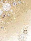 Seashells on the sand — Stock Vector