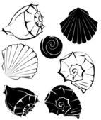 Silhouette of sea shells — Stock Vector