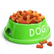 Bowl with dog feed — Stock Vector