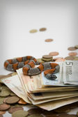 Snake and money — Stock Photo