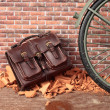 Abandoned bag and cycle — Stock Photo