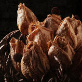 Dried roses — Stock Photo