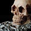 Human skull and chains — Stock Photo