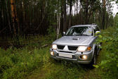 Car in forest — Stock Photo