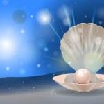 Постер, плакат: Pearl shell