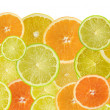 Stock Photo: Citrus background poster large