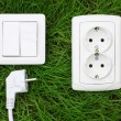 Power receptacle and light switch on a green grass - Stock Photo