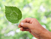 Eco house concept ,hand holding eco house icon in nature — Stock Photo