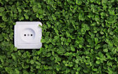 Electric power receptacle on a green grass background — Stok fotoğraf