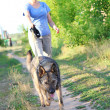 Stock Photo: Womrunner running with dog on country road in summer nature