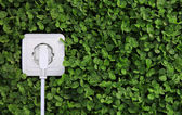 Electric power receptacle on a green grass background — Stock Photo