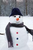 Happy snowman — Stock Photo