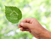 Eco house concept, hand holding eco house icon in nature — Stock Photo