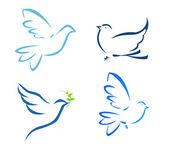 Vektor-illustration der fliegenden taube — Stockfoto