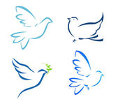 Vector illustration of flying dove — Stock Photo