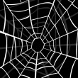 Stock Photo: Vector illustration of cobweb