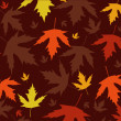 Autumn leaves vector illustration — Stock Photo