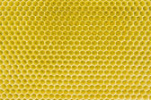 Honeycomb pattern — 图库照片