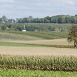 Landscape in Saxony, Germany — Foto Stock