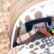 Baby looking out of the stroller — Stock Photo #39062479