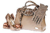 Leopard bag, shoes and gloves — Stock Photo