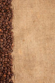 Line of coffee beans and burlap — Stockfoto