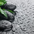 Zen stones and leaves with water drops — Stock Photo #15701425