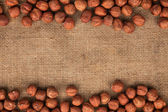 Hazelnut lying on burlap — Stock Photo