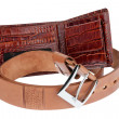 Brown purse with belt — Stock Photo
