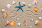 The word sea written on the sand — Stock Photo
