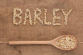 Inscription barley with a wooden spoon on burlap — Stock Photo