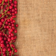 Red currant on sackcloth — Stock Photo