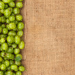 Green gooseberry lying on sackcloth — Stock Photo