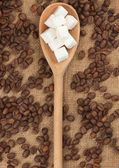 Wooden spoon with lump sugar — Stock Photo