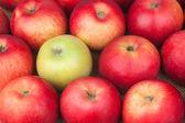 Green apple among red apples lying on sackcloth — Stock Photo