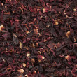 Background out of hibiscus flowers — Stock fotografie