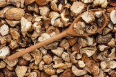 Wooden spoon with dried mushrooms — Stock Photo