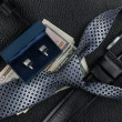 Tie, belt, wallet, cufflinks, money lying on the skin — Stock Photo #41751893