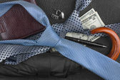 Tie, umbrella, wallet, pen, cufflinks, money lying on the skin,  — ストック写真