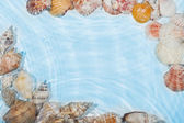 The frame of sea shells in the water — Stock Photo