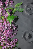 Leaves and lilac flowers in the water in the rain — Stock Photo